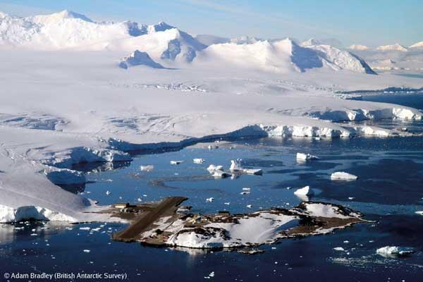 n-Antarctic-0217