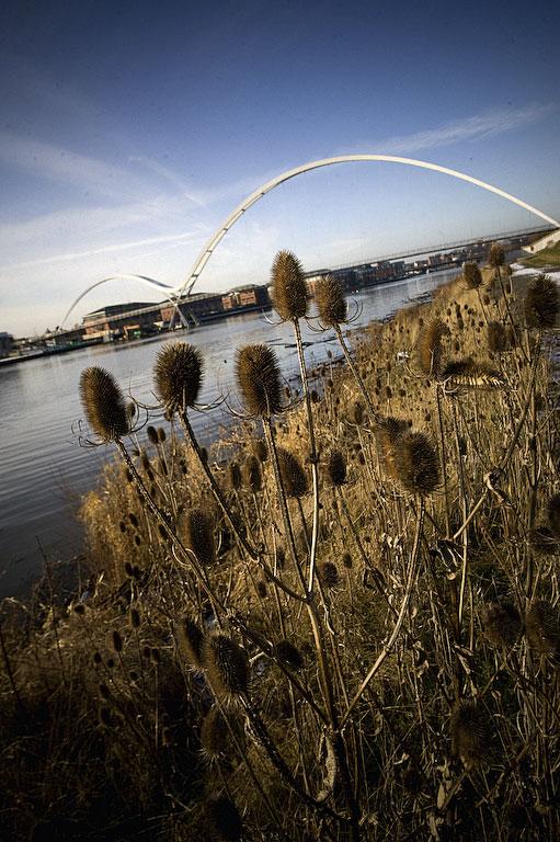 Bridge ushers in new era for Tees Valley