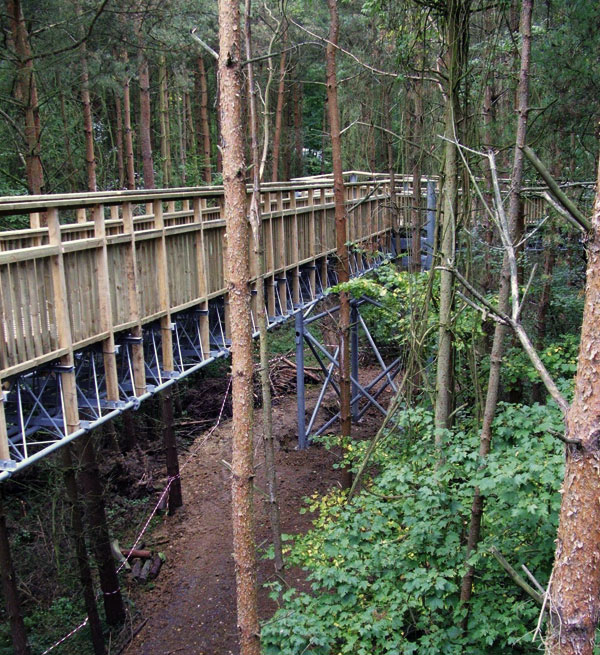 Environmental title goes to innovative forest walk