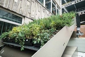 ...with greenery supplied by plant boxes to be retrofitted to the steelwork