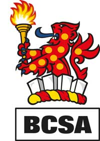 BCSA gives IStructE exam help