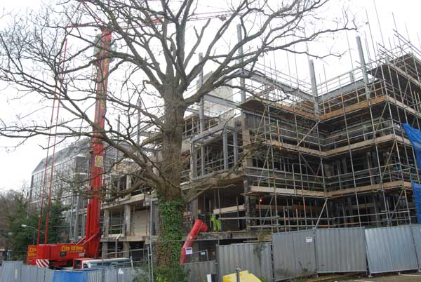 Steel refit for Tunbridge Wells offices